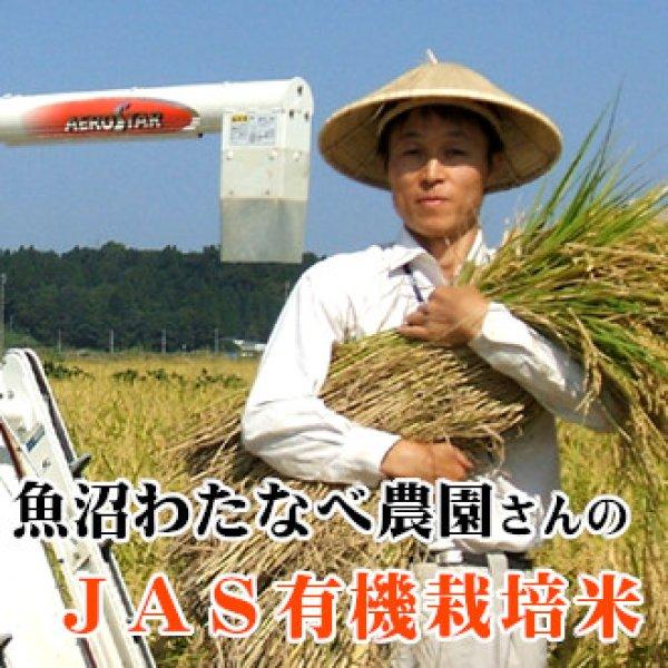 画像1: 魚沼わたなべ農園のJAS有機栽培米 (精米) 5kg (1)