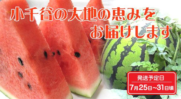 画像1: 小千谷産スイカ「祭りばやし777 (スリーセブン)」