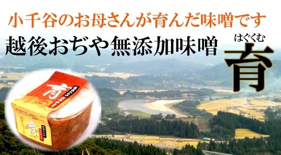 画像1: 込田さんちの越後おぢや無添加味噌 育(はぐくむ)