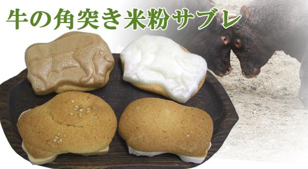 画像1: 牛の角突き米粉サブレ
