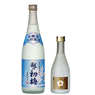 画像1: 越の初梅 本醸造生貯蔵酒