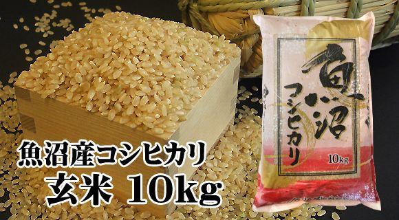 画像1: 【新米】魚沼産コシヒカリ玄米 10kg