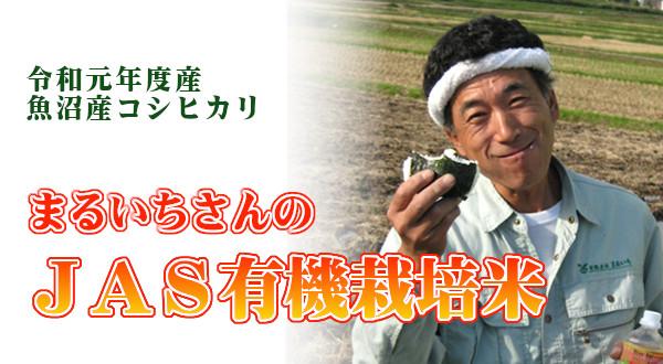 画像1: まるいちのJAS有機栽培米 (精米) 5kg