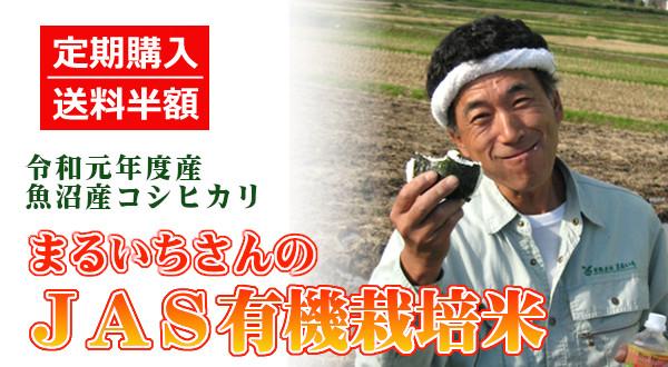 画像1: 【定期購入・送料込】まるいちのJAS有機栽培米