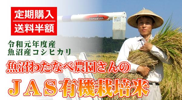 画像1: 【定期購入・送料込】魚沼わたなべ農園のJAS有機栽培米